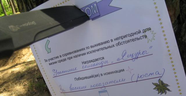 http://rgspn.3dn.ru/diplom1.jpg